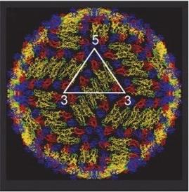 fmicb-08-01372-g0001-e1502185158825.jpg
