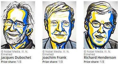 Nobel en química
